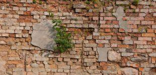 Erozja ściany z cegły