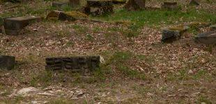 Stary cmentarz poniemiecki