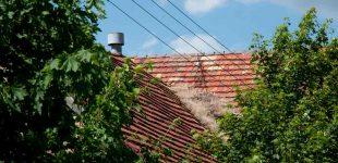 Stary dach - pielęgnacja